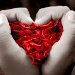 Iubeste, iubeste, iubeste...