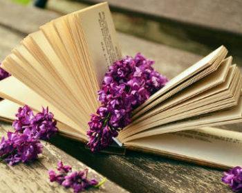 carti ieftine, librarii online